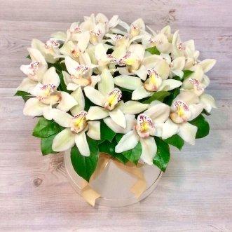 Белые орхидеи в коробке